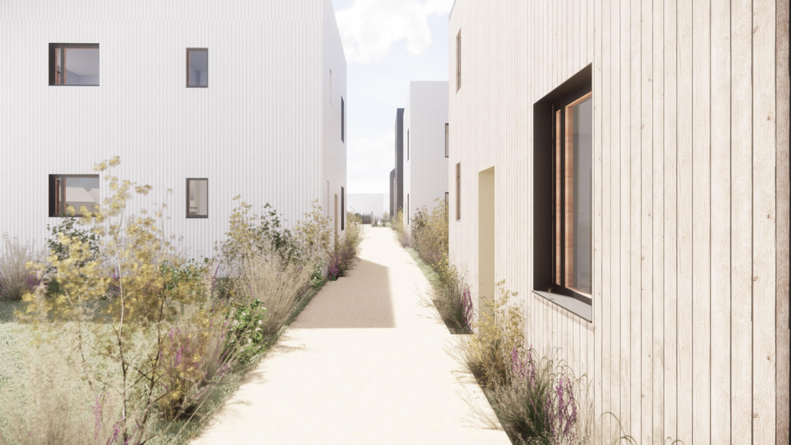 graam-treiges-02-logements-genlis-exterieur-venelle-jardin